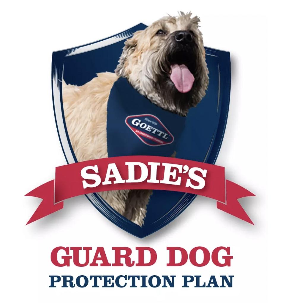 Sadie's Guard Dog Protection Plan